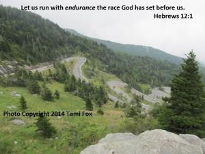 endurance-2015