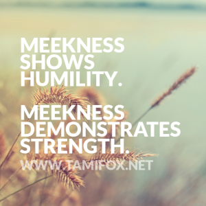 quote-meekness